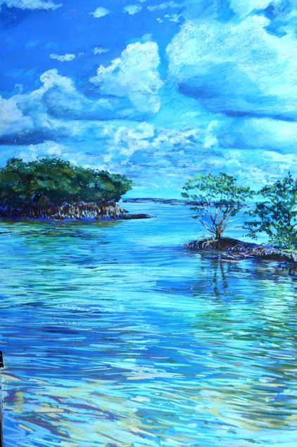 'Biscayne Beautiful' art exhibit opens in Biscayne National Park