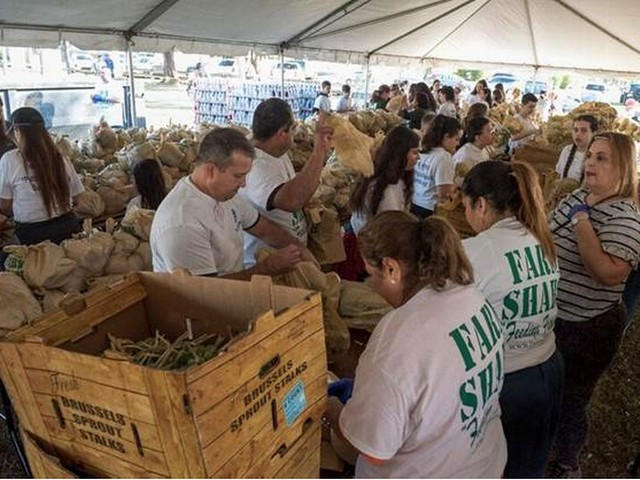Commissioner, Farm Share distribute 50,000 pounds of food for holidays