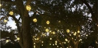 Grove shines brighter with #GroveGlow lighting installation at Peacock Park