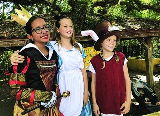 Call for artists is a sure sign the 14th Annual Mad Hatter Arts Festival is drawing near