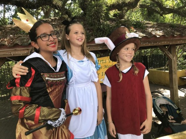Annual Mad Hatter Arts Festival is drawing near