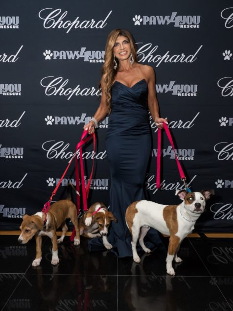 Paws4You Rescue raises $75,000 at annual gala