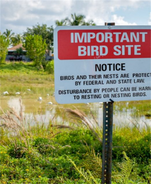 Town seeking residents' help to protect environmental site