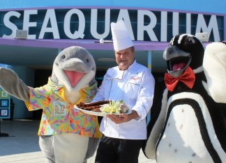 Latin and Caribbean food, music festival returning to Seaquarium