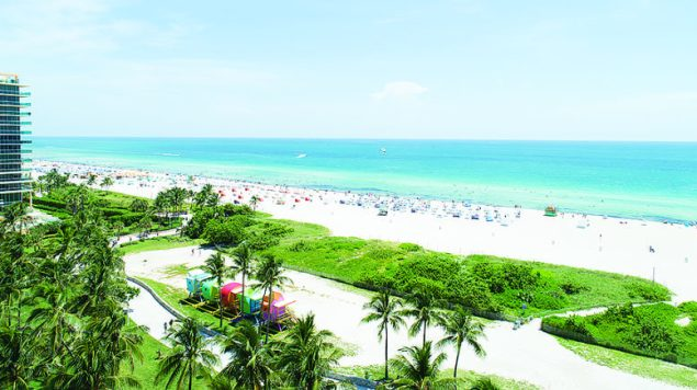 Local Miami Beach Hotels Offer Summer Deals and Unique Experiences