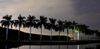 Spend a lovely evening by the bay at Deering Estate