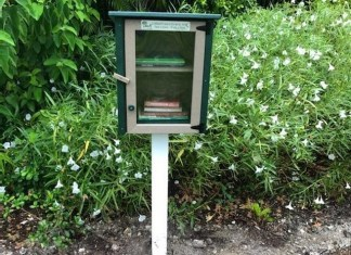 Little Free Libraries pop up at city parks