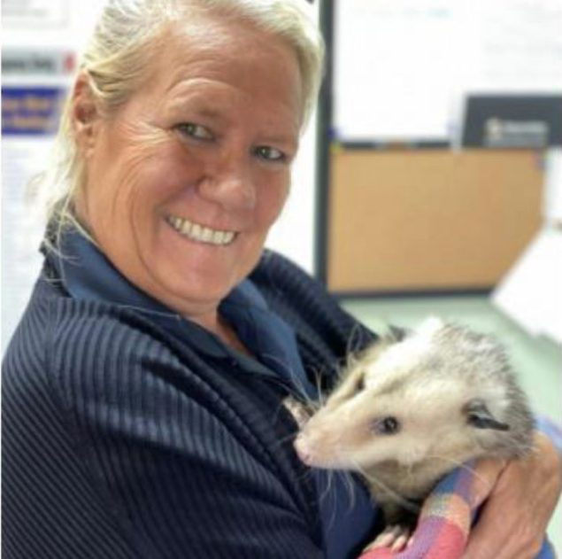 Bruce the opossum is pictured with his beloved friend and caretaker Mary Diddle.