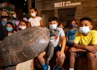 Zoo Miami earns National Achievement Award for Conservation Action Center