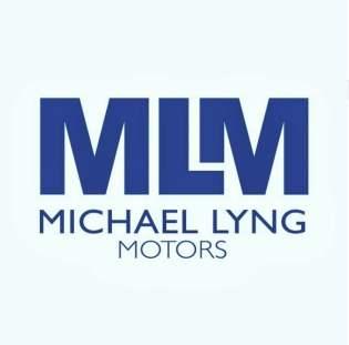MLM-1-1