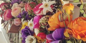 Flowers from Clem's Garden