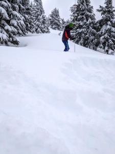 probing snow