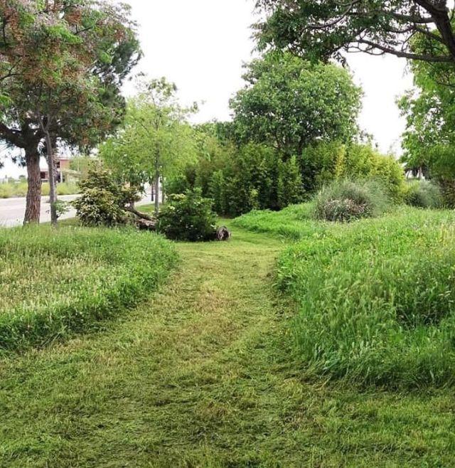 Com i per què salvar els herbassars a les nostres ciutats_Comnou_Miquel Puig_REUS_JORDI INGLÉS