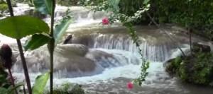 agua-como-laxante