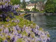 Passeggiata Villa Olmo