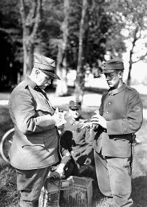 Pombos na Primeira Grande Guerra