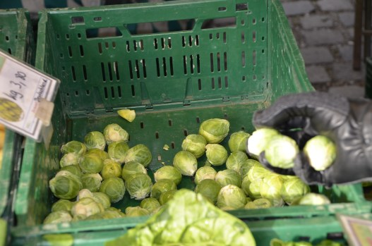 Selecting sprouts