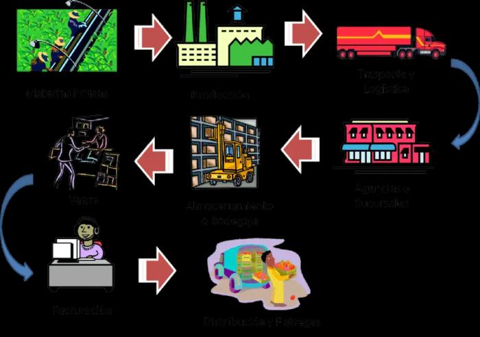 Explicacion de la cadena general de suministro poblacional