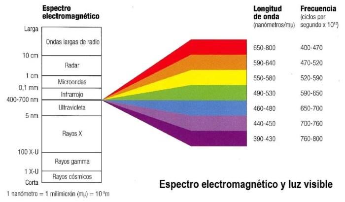 Descripcion del espectro de la luz y de los colores primarios