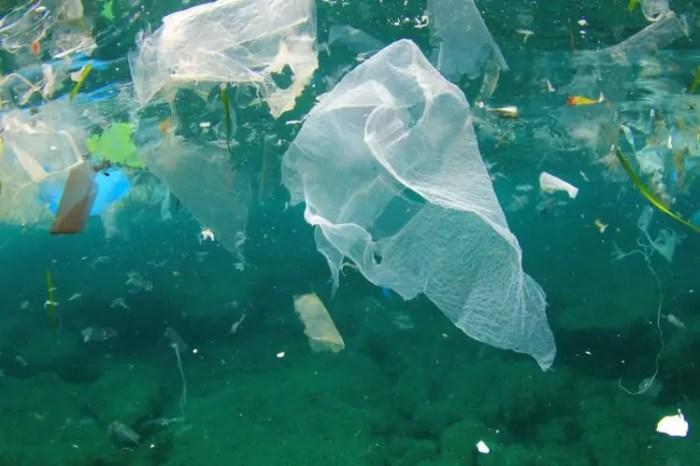 convierten plastico en combustible