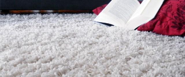 C mo limpiar la alfombra c mo lo puedo hacer - Productos para limpiar alfombras ...