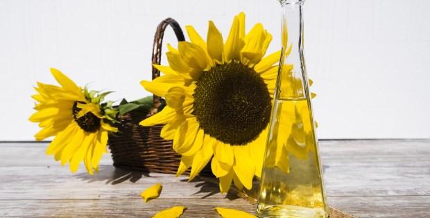 ¿Cómo aprovechar el aceite de girasol?