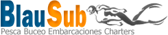 logo-blausub