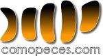 www.comopeces.com