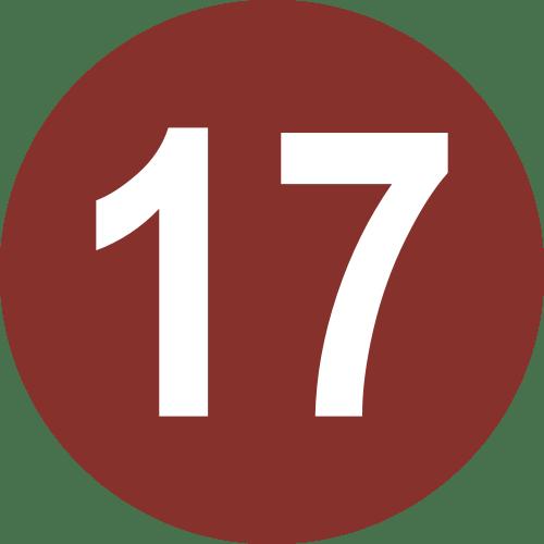Como se escribe 17
