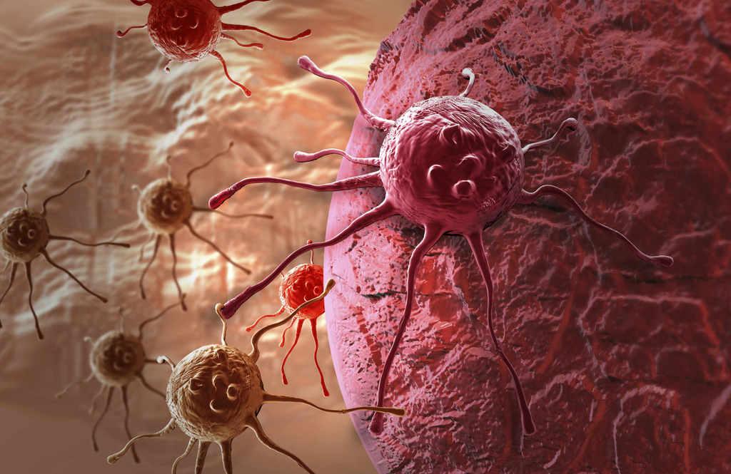 Como se produce el cancer