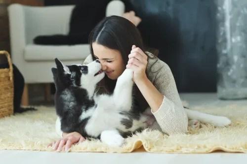 Acaricia un animal