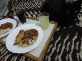 Arroz, feijão, frango e... um gato?