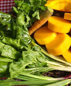 Como siempre orgánico – Huerta orgánica certificada