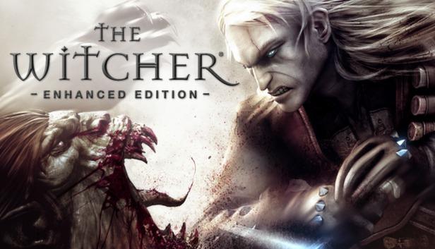 the witcher 1 portada