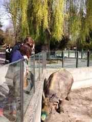 Munique, Alemanha, Zoológico, Crianças, Hellabrunn - Foto Nathalia Molina @ComoViaja (82)