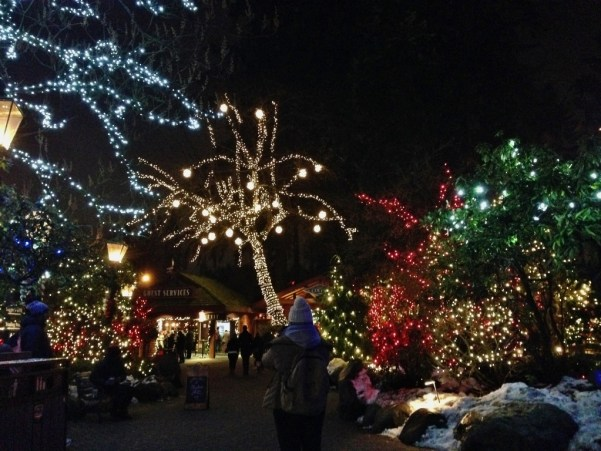 luzes-do-canyon-of-lights-capilano-natal-no-canada-vancouver-foto-nathalia-molina-comoviaja