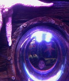 SeaLife Munique Aquario Alemanha Viagem - Foto Nathalia Molina @ComoViaja (28)