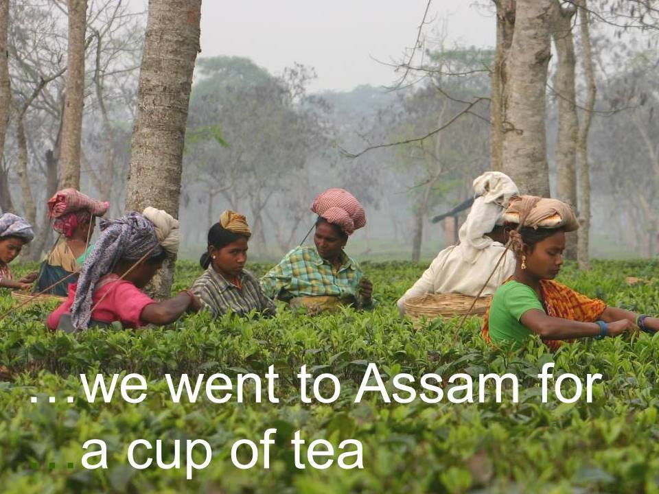 Peggy Carswell: Organic Farming In Assam