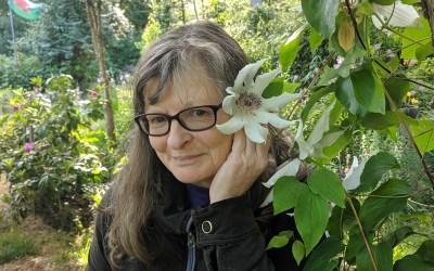 Kim Stubblefield – Director, Website Administrator