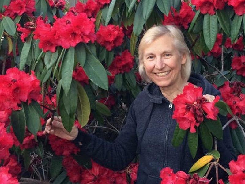 Linda Graf - Membership Chair
