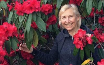 Linda Graf – Membership Chair