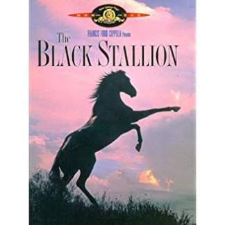 The Black Stallion (SS) G WS