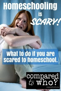 scared to homeschool what to do homeschooling