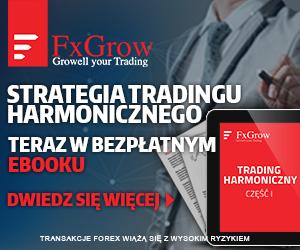 ebook_300x250_pl