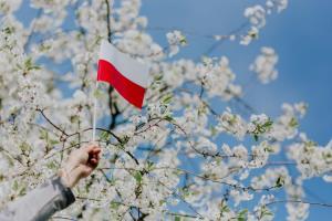 Kurs złotego: EUR/PLN bez reakcji na dobre dane gospodarcze z Polski