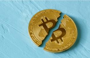Bitcoin (BTC) spada 5. dzień z rzędu. Dogecoin (DOGE) cały czas w szale zakupów