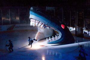 Dogecoin (DOGE) i bitcoin (BTC) opcją płatności za karnety na mecze San Jose Sharks z NHL