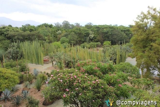 Jardim Etnobotânico