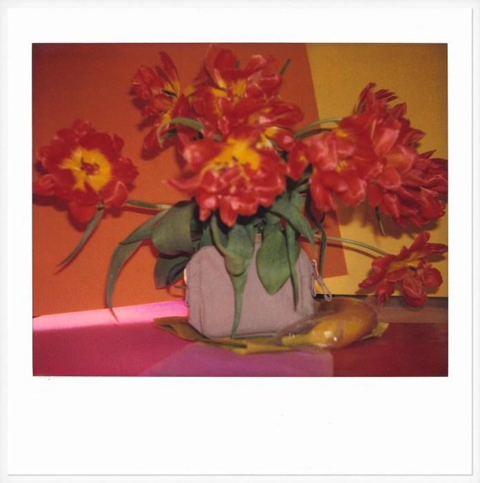 Untitled, 2005 Archival pigment print reproduction in museum grade frame, original polaroid in archival box 10.3 x 10.2 cm (unframed) / 38.1 x 31.6 cm (framed) PFEI/PH 251