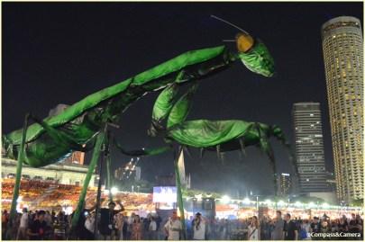 Marvelous mantis